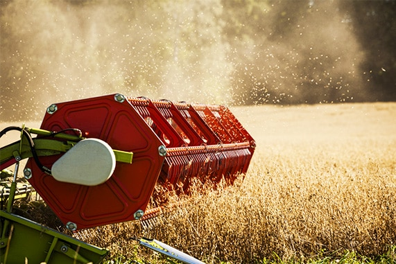How Particle Analysis Benefits Agricultural Grain Size Analysis